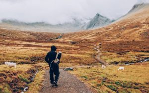 Tips to stay fit while travelling