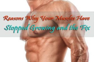 12 Reasons Why Your Muscles Have Stopped Growing and the Fix