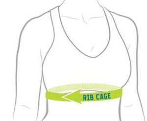 Rib cage measurement