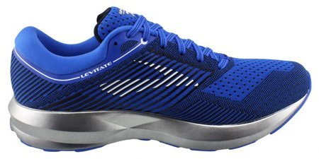 Brooks Levitate mens